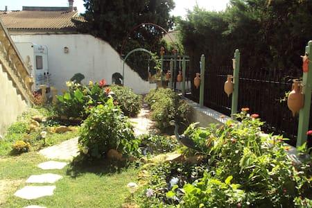 Appartement avec jardin - Orange