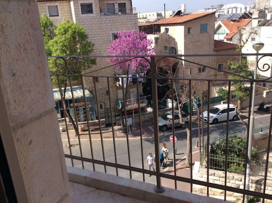 Overlooking delicious Hummos restaurant on Nisim Bahar.