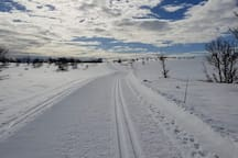 Av Norges flotteste skiløyper i nærområdet