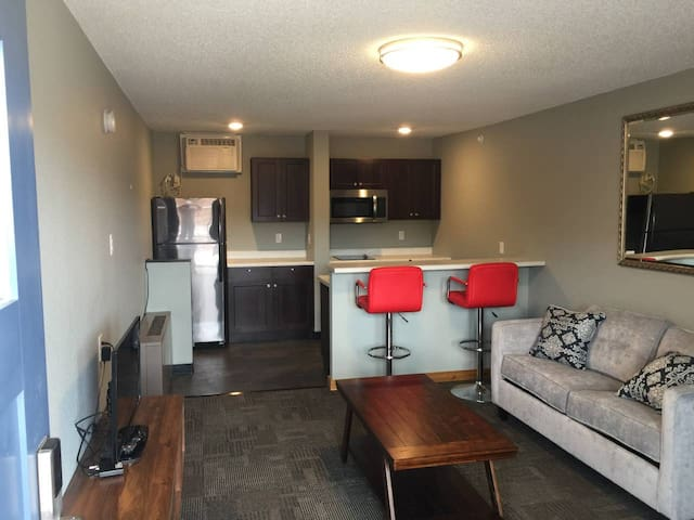Suite 214 - 1BR apartment with kitchen, on 2nd floor