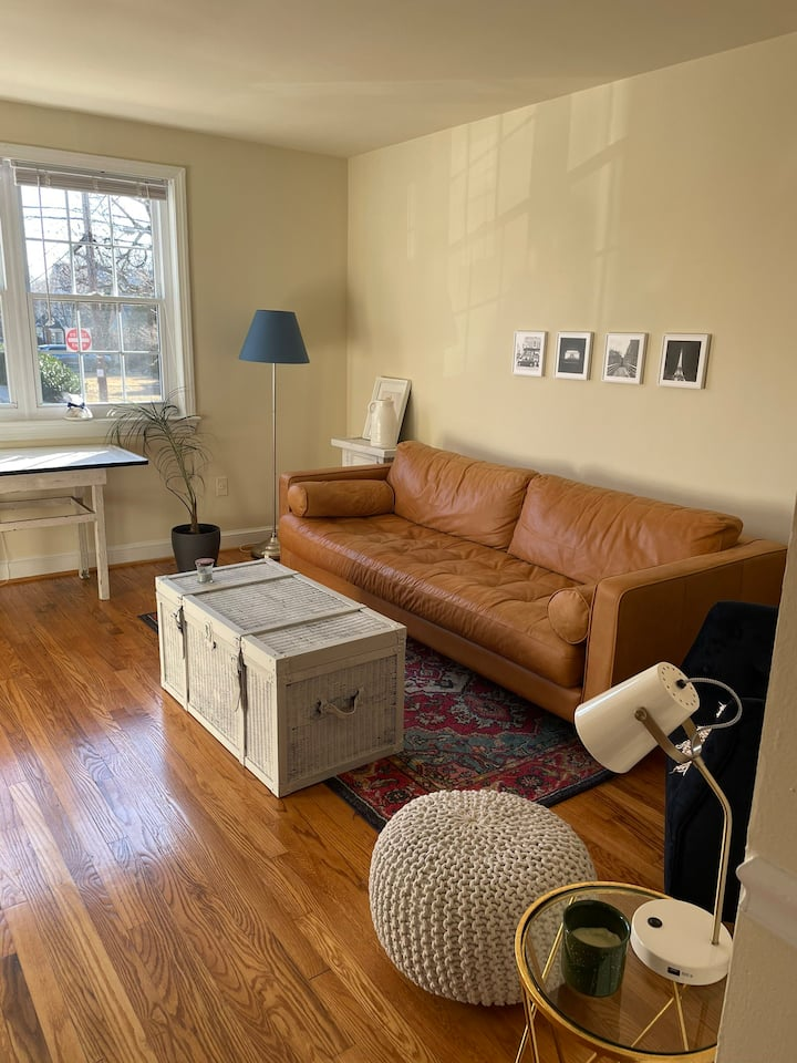 Spacious and Homey in Downtown Bethesda