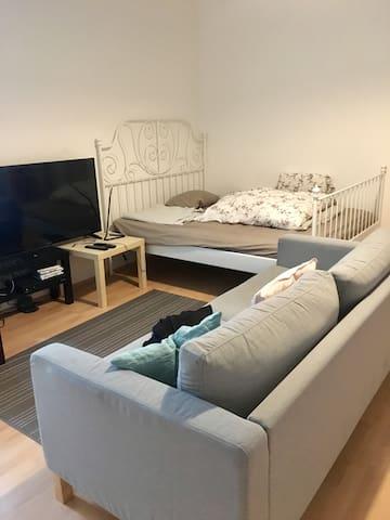 Huge one bedroom apartment in Prenzlauer berg