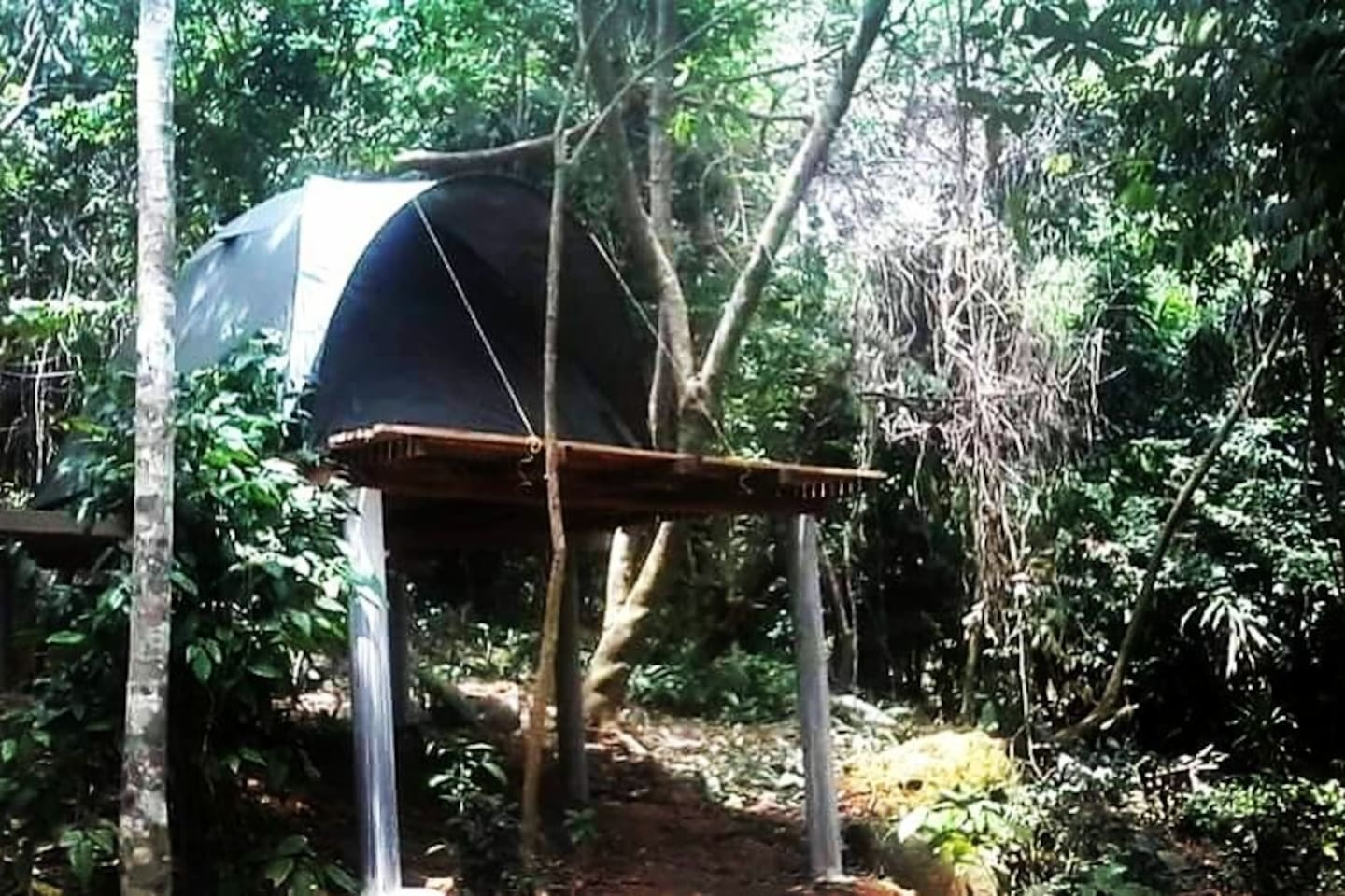 Island jungle camping at RainForest Camping Perhentian Island, Pulau Perhentian Kecil, Malaysia