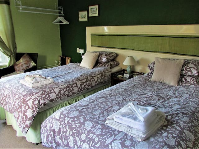 Comfortable Ensuite Twin Room in Friendly B&B