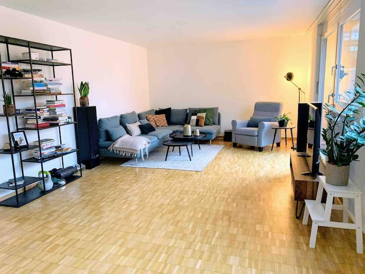Beautiful large flat in Zurich's trendy district 5