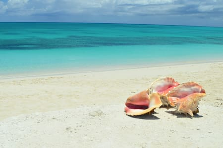 Camilla's Beach House - 1 Bedroom Apartment - Providenciales - Wohnung