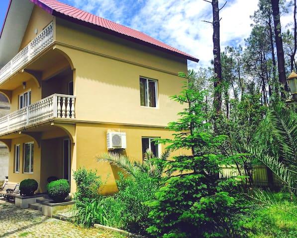 Villa Shekvetili
