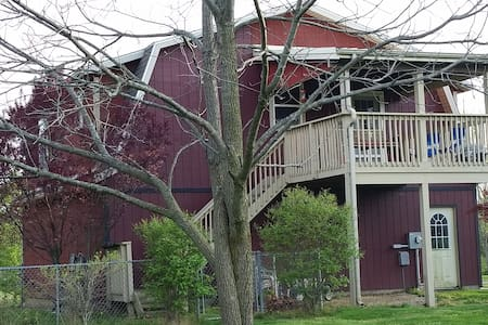 Country Cozy with a Tree House view - Springfield - Huoneisto