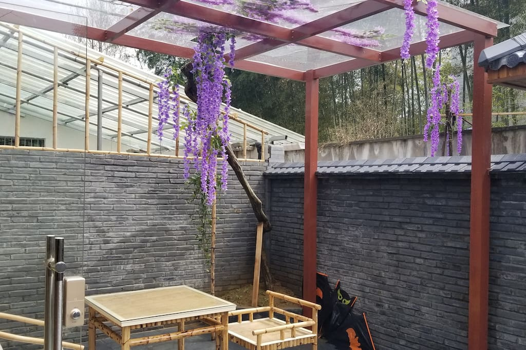 紫藤树下的桌椅,现在紫藤已长了很多叶子。