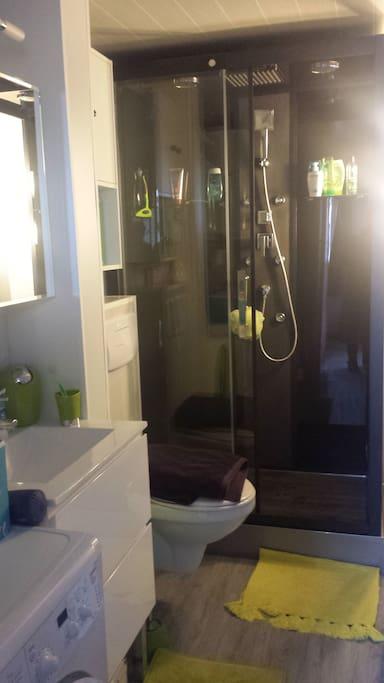 Salle de bain et WC ! Grande cabine de douche!