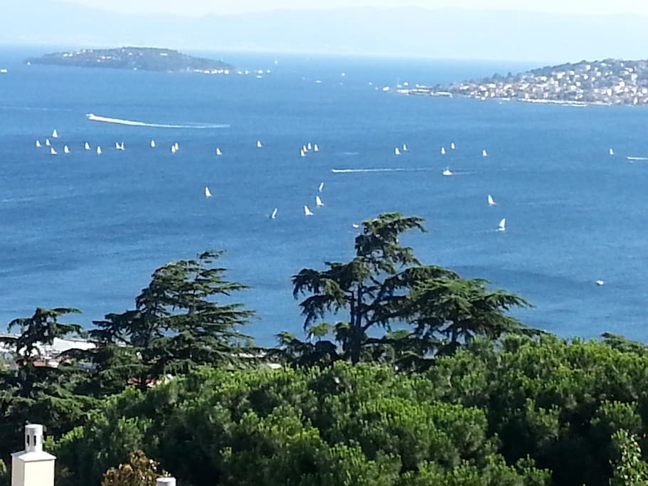 Islands,sailing optimists, view from garden.