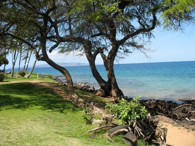 Great 1 Bdrm Across fr Beach OceanView! Start $129
