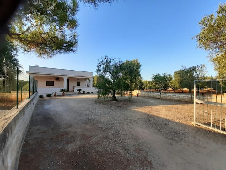 Villa between olive groves 7 km from ostuni