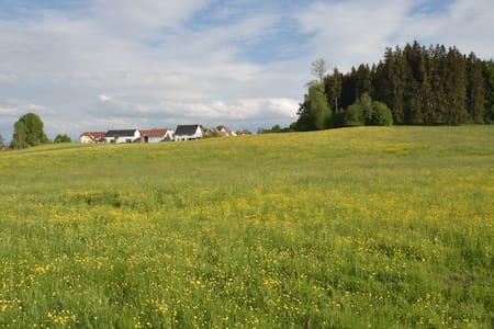 4 Sterne Wohnung mit Waldblick - Wangen im Allgäu - アパート