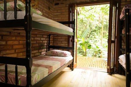 Cama em quarto compartillhado de 6 camas - Florianópolis