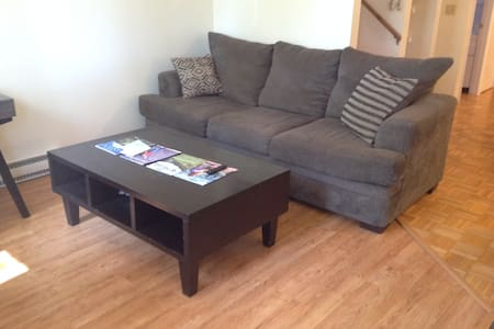 Downtown Carbondale-Entire Condo-Walk Everywhere