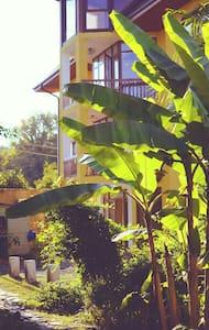 Гостевой Дом3 на Лесной у моря - Пицунда