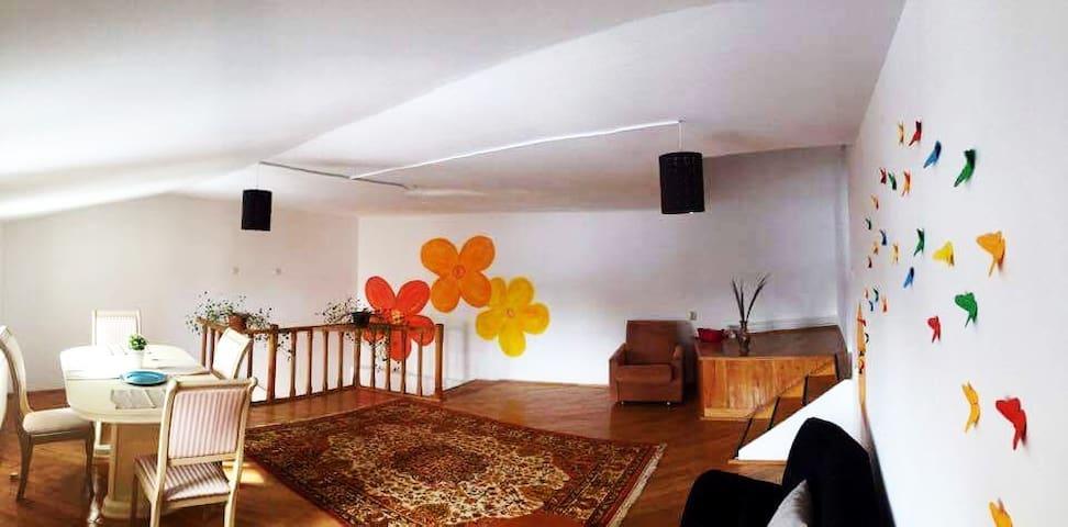 Maison de Joie - Târgoviște - Квартира