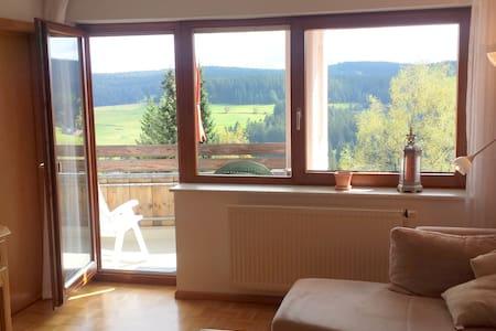Ferienwohnung STERN (4 bis 5 Pers.) - Schonach im Schwarzwald - 公寓