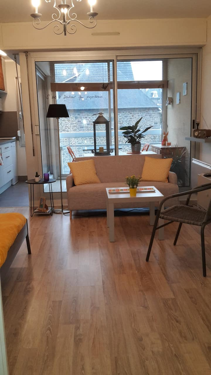 APPARTEMENT  STUDIO  DINARD