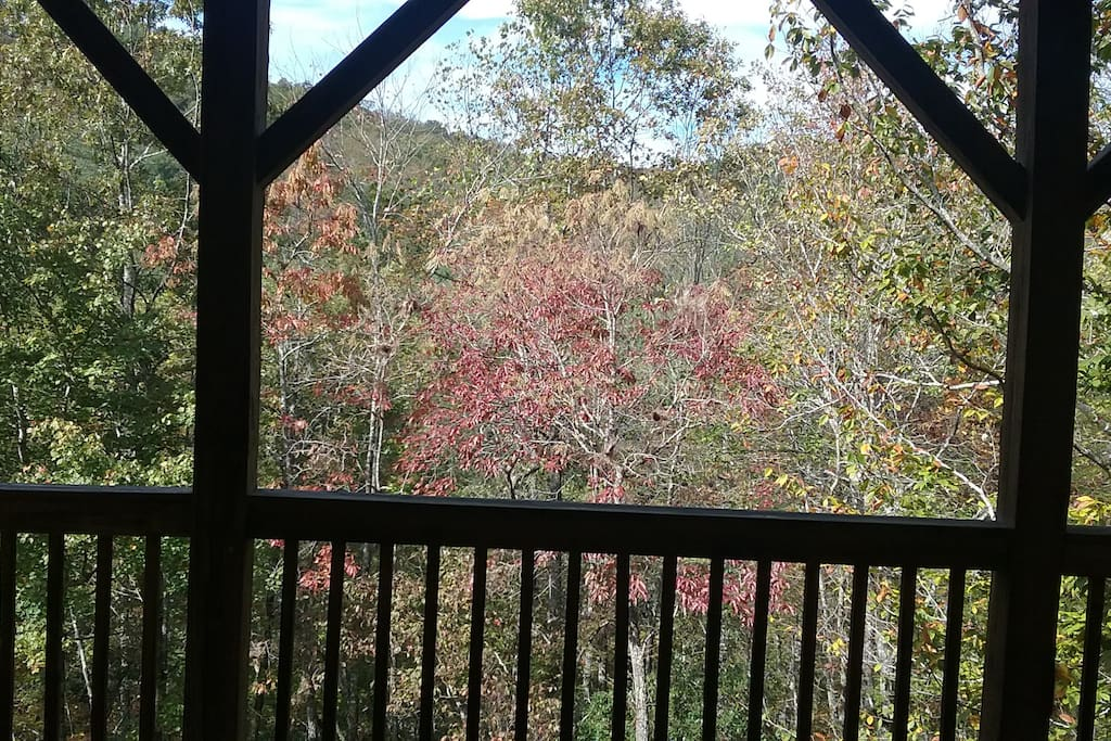 Fall foliage porch living.