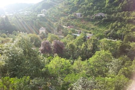Настоящий 100-летний дом на склоне горы - Kobuleti - House