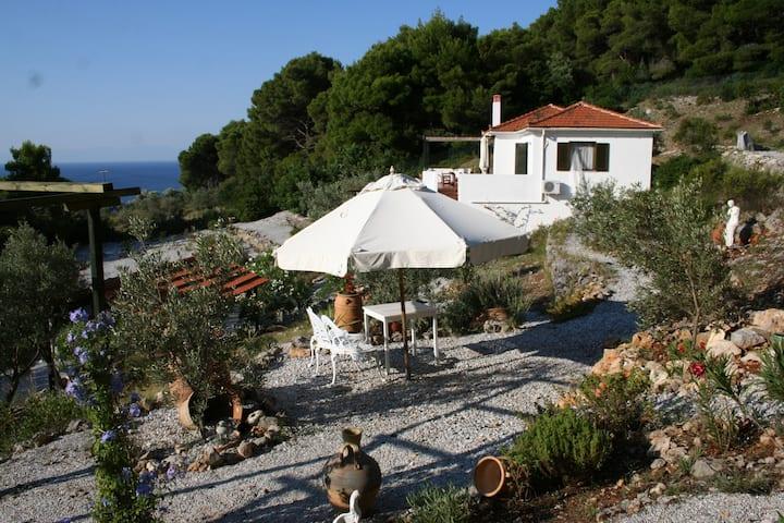 Carob Tree House - a gem in the Aegean, Alonissos