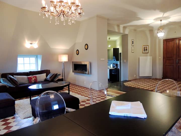 Wonderful appartement in French Chateau