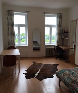 Flat in Vienna City Centre with River View - Wien - Apartment