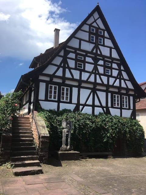 Traumwohnung auf dem Weingut in Keltern-Dietlingen