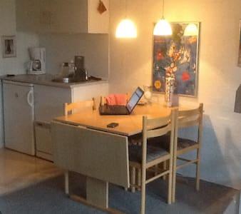 LEGO ,surfing, pool, weekoffer - Hemmet - Διαμέρισμα