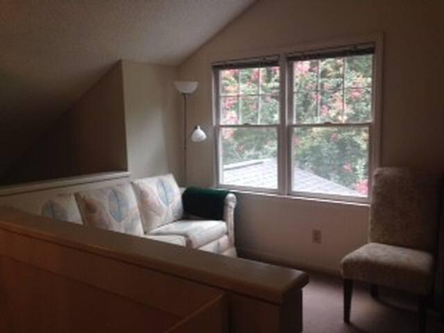 balcony loft with queen size sleeper sofa