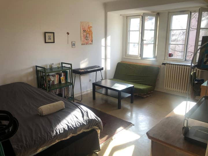 Appartement lumineux et confortable hyper-centre