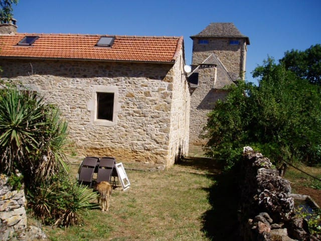 Gîte de Mejanet - Saint-Rémy - Dům