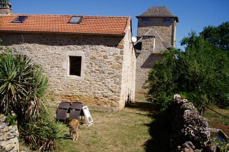 Gîte de Mejanet - Saint-Rémy