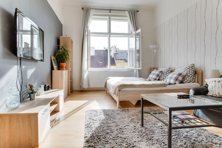 Квартира Местного Жителя в Центре Праги