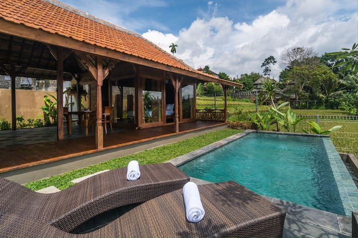 Wiswarani Villas 1 - Ubud - Willa