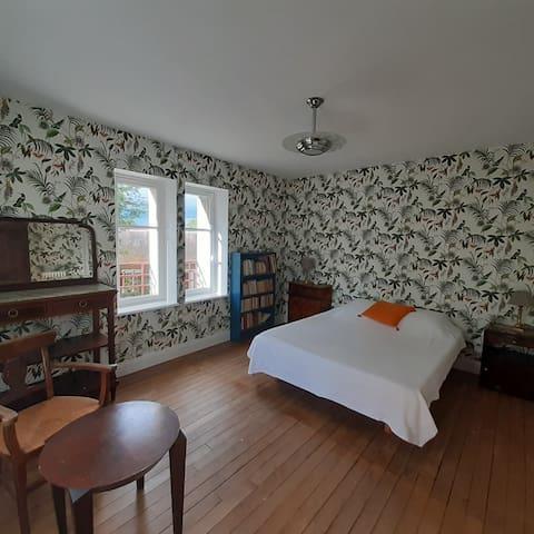 Double Room 1st Floor.Tropical Birds (1 of 2)