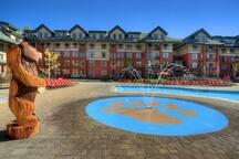 Marriott Timber Lodge Luxury 1BD villa sleeps 4