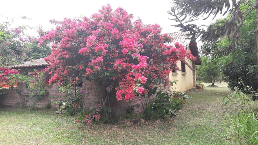 Sítio no Cond fechado Rancho Alegre - RS 040 -P91