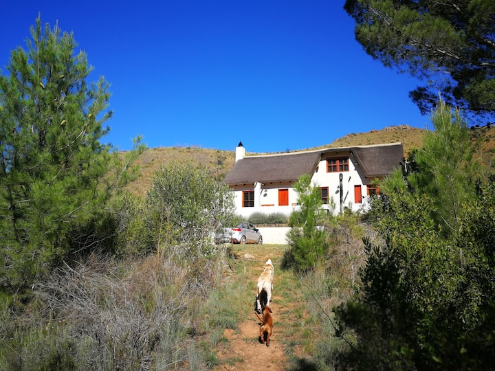 Mazwil Retreat - Pet friendly Self-catering Farm