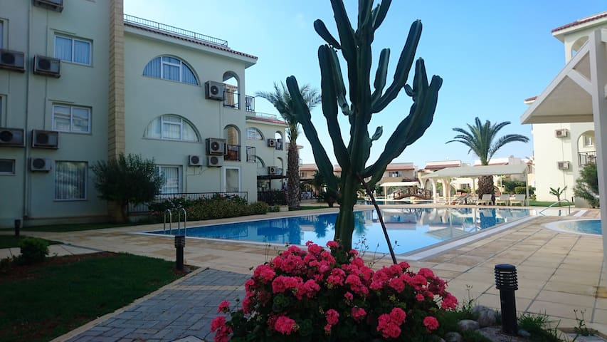 Pool view  1 Bedroom  apartment  in North Cyprus