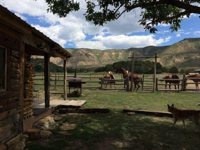 Mesa Verde Stables Hunting Cabin