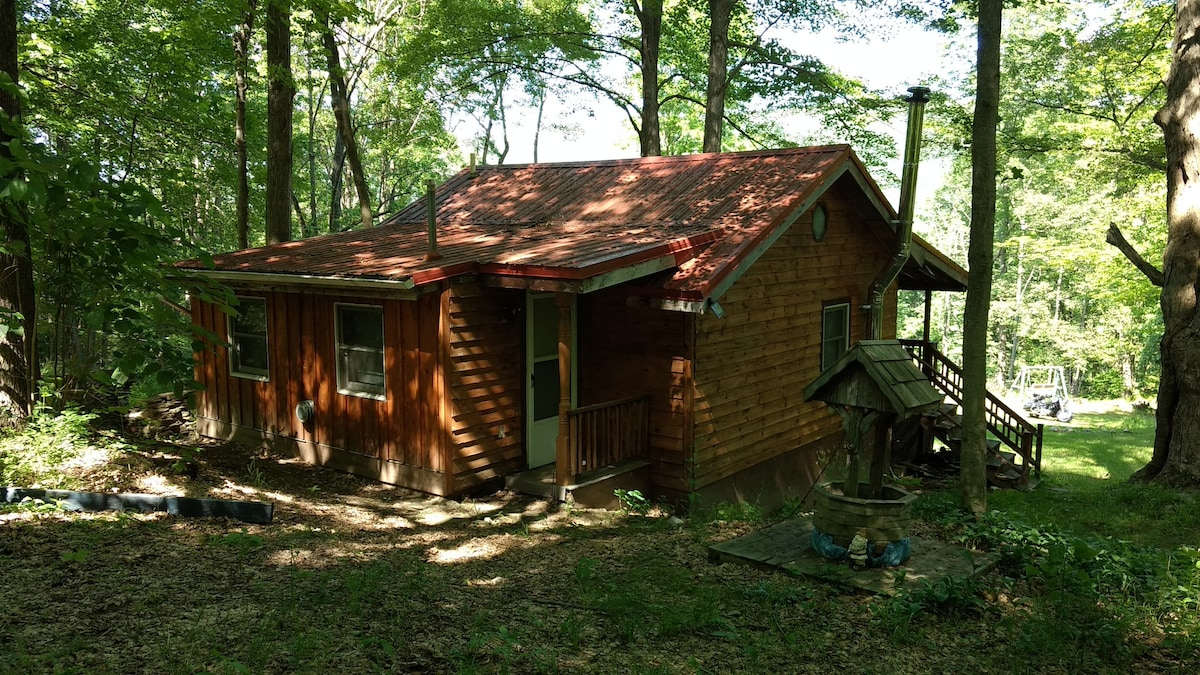 Cabin Hiding In The Woods On 7 Acres Of Land With Trails And Mountain  Creeks.