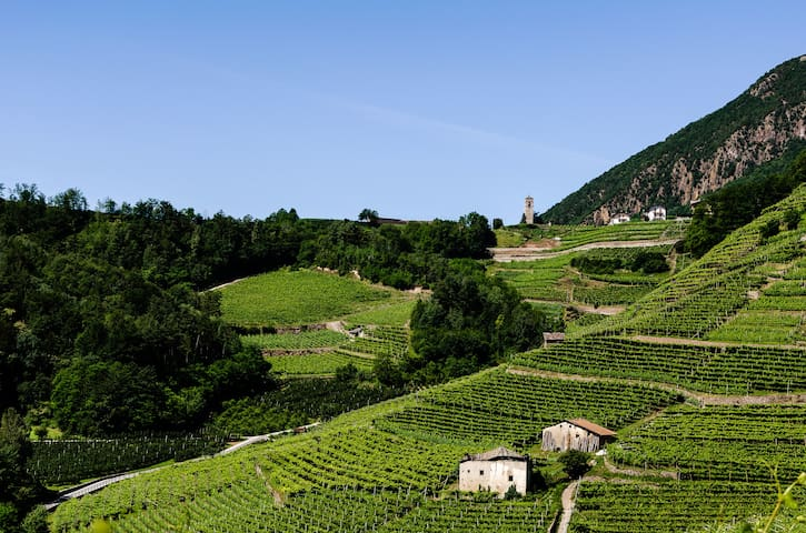 Casa Val di Cembra tra Trento e le Dolomiti