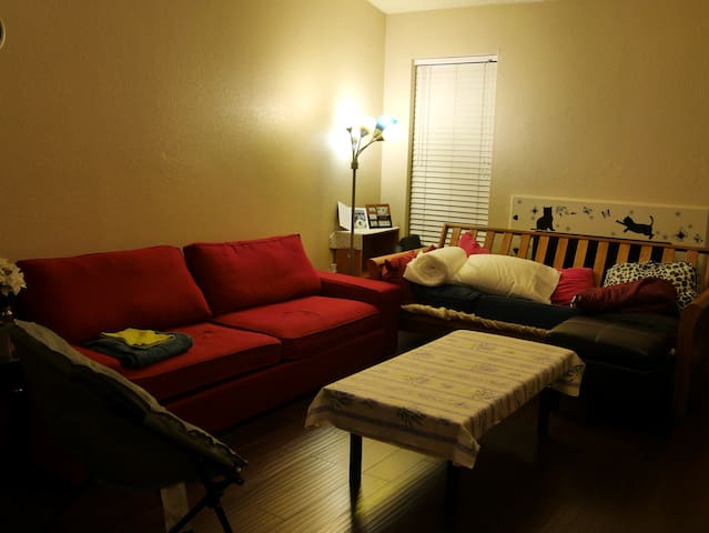 Comfy stay in Houston Living room (Medical Center)