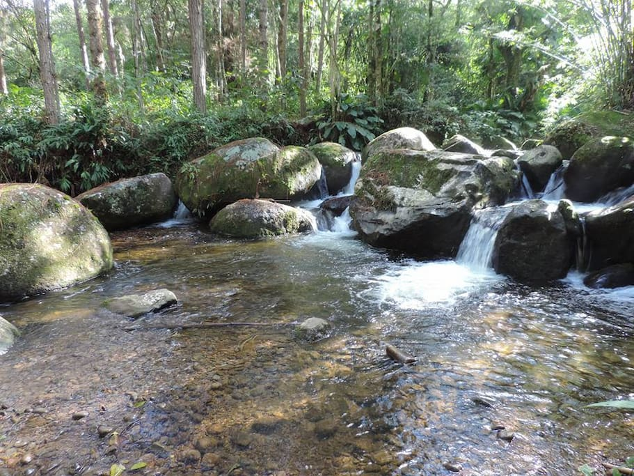 Rio das Couves Acesso exclusivo para hospedes