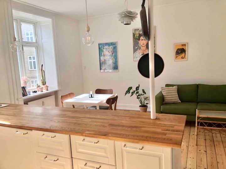 Nyrenoveret lejlighed i København N