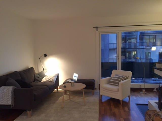 Top floor apartment in Oslo, with private terrace - Oslo - Flat