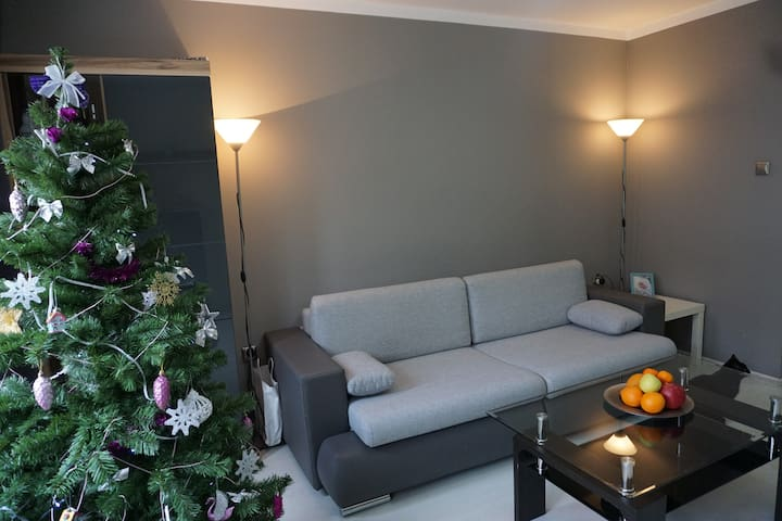 47 m2 apartment 15 minutes from center of Warsaw - Pruszków - Apartamento